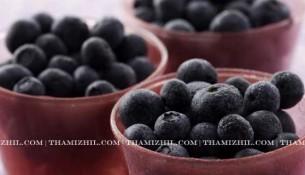 நாவல் பழம், Blue Berry, Sugar, Diabetes, Effective Medicine, ரத்தப்போக்கு, பேதி, தொண்டைப் புண் , தொண்டை அழற்சி