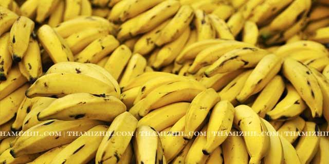 வாழைப்பழம், banana, vazhai