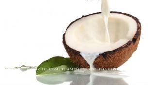 """Coconut Milk"", ""Thengai paal"", ""Hair Growth"""